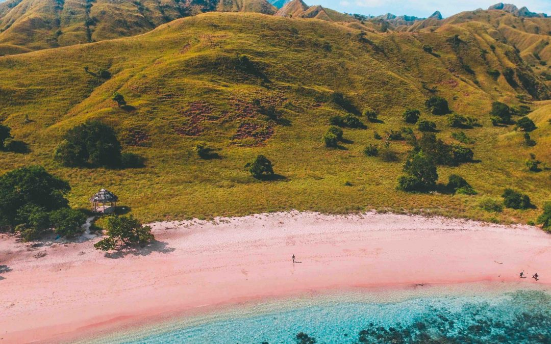 Komodo National Park | The Ultimate Guide
