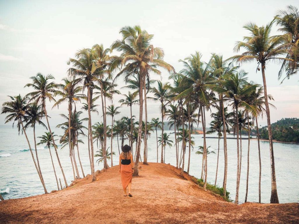 Coconut Tree Hill in Mirissa at sunrise