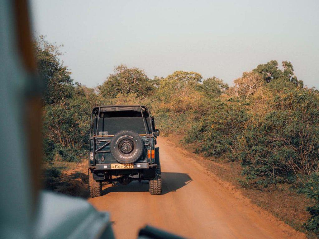 Jeep Safari in Yala National Park