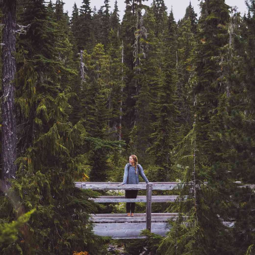 Mount Washington in Strathcona National Park
