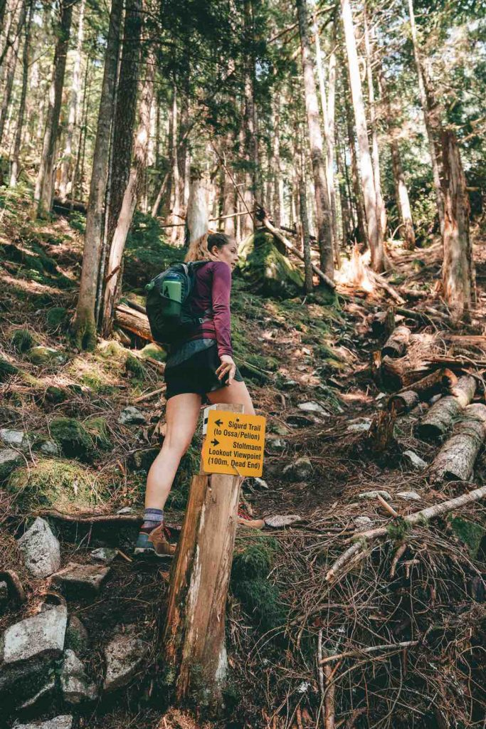 Sigurd Trail in the Squamish Valley