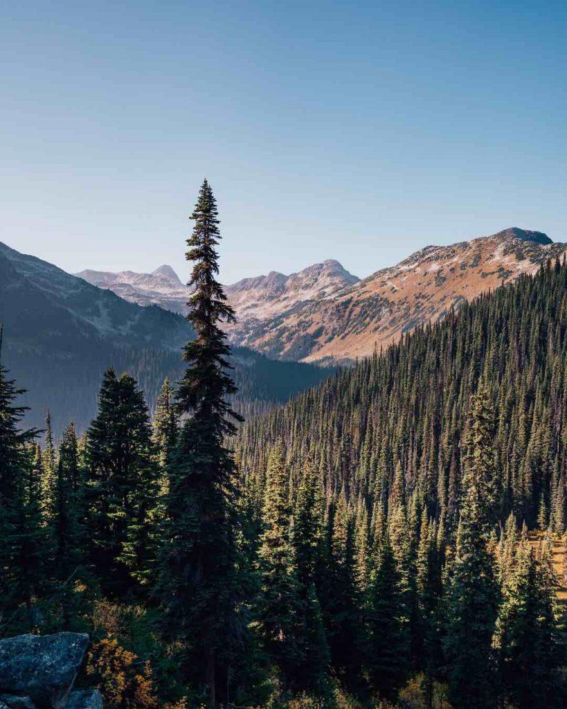 The Rohr Lake Trail